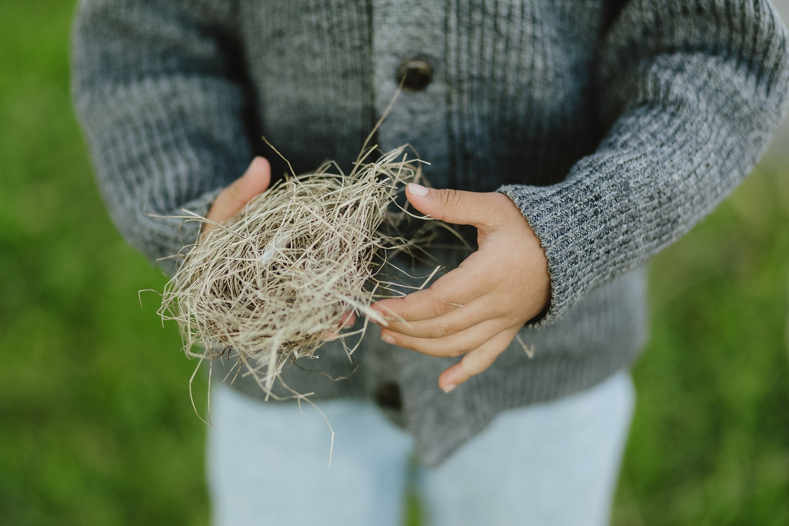 boy holding bird's nest close-up