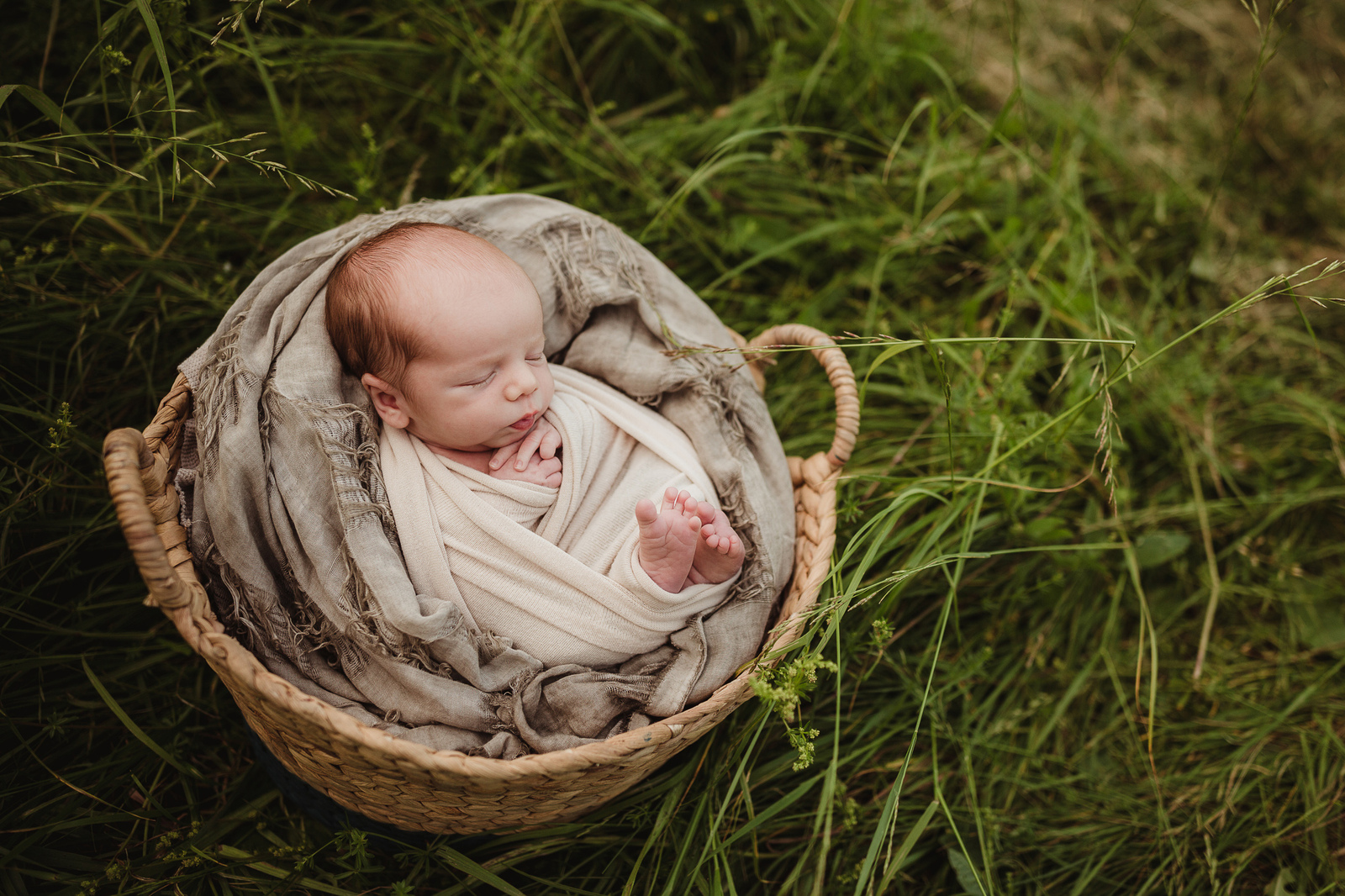 outdoor newborn session in grass in whitby
