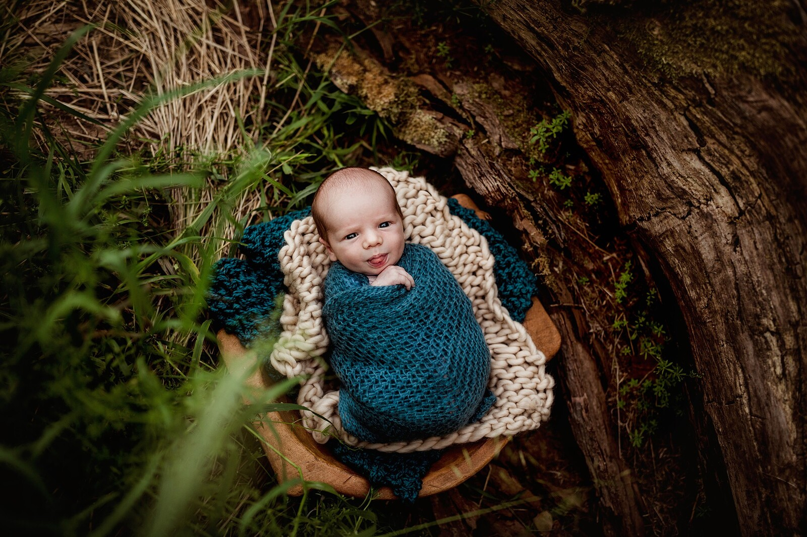 outdoor newborn session in woods